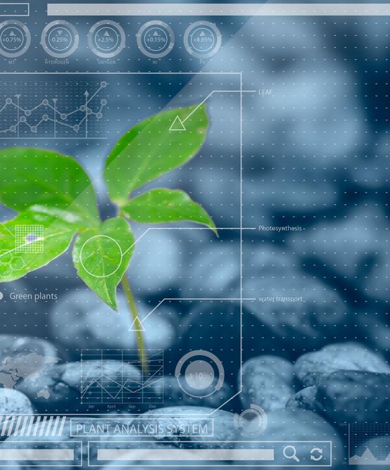Sensibilisation en Géomatique appliquée à l'agriculture et à l'environnement
